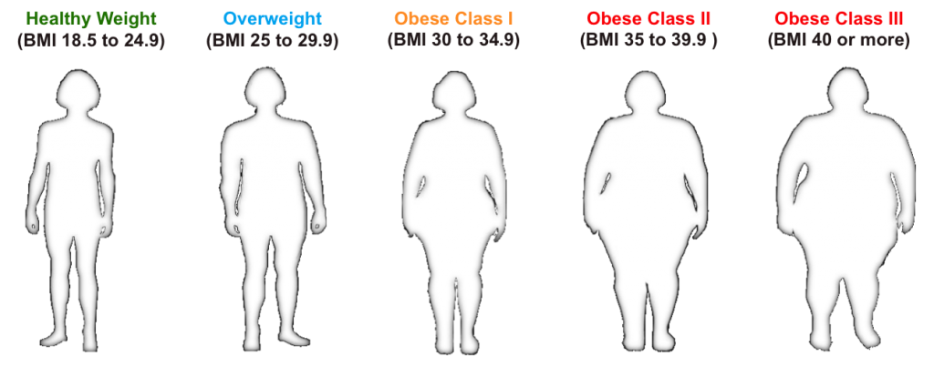 Body Mass Index categories